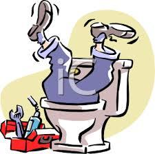 Let's flush 5.27 million dollars down the toilet