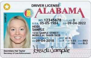 STAR ID driver license